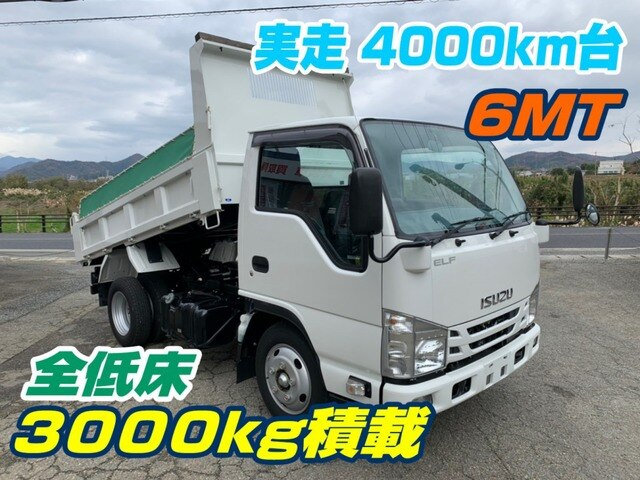 ISUZU / Elf Truck (TPG-NKR85AD)
